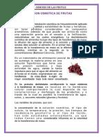 146900964 Deshidratacion Osmotica de Frutas