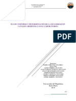INFORME DE HIDRAULICA canal acrílico.docx