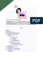 Química orgánica historia.docx