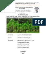 Causas-y-Problemas-PIP_Pueblo-Libre.pdf