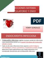 clase circulatorio y ose0 2014.pdf