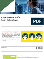 PDF TEMA 07