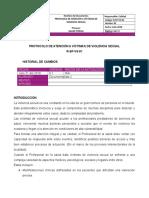 001. PROTOCOLO DE ATENCIÓN A VÍCTIMAS DE VIOLENCIA SEXUAL - 31JUL2018 - DMD.doc