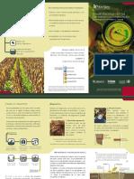 Rehabilitación productiva de suelos con compatación.pdf