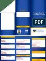 Ingeniería Industrial nuevo.docx