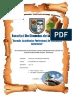 308633486-Evaluacion-de-La-Carega-Microbiana-en-El-Mouse-y-Teclados-Del-Centro-de-Computo.docx