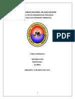 GOBIERNO REGIONAL DE AREQUIPA.docx