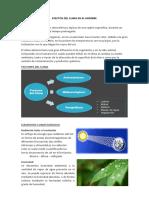 EFECTOS-DEL-CLIMA-EN-EL-HOMBRE-sisisis.docx