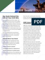 2285-80 Hnbr Seals