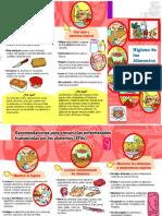 triptico h. alimentos.docx