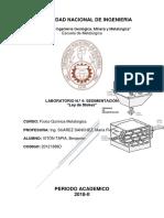 Informe Nº 4 Sedimentación.docx