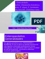Amebas-patógena y No Patógena- 2019-I