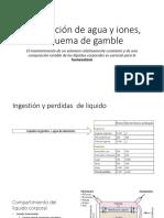 Distribución de Agua y Iones, Esquema de (1)