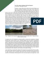 Cohesive Sediments Mangrove TELEMAC Sylvain