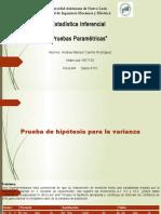 TRABAJO ESPECIAL 2 Pruebas Parametricas