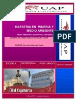 MAESTRIA EN  MINERIA Y MEDIO AMBIENTE.docx_01.docx