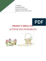 Proiect-Paste.docx
