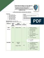 informe VEHICULO.docx