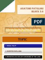 Slide 3.6 (2011)_Fix