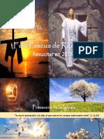 Pascua Con Humor de J.L. Cortés