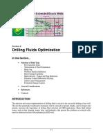 6 - Drilling Fluids Optimization