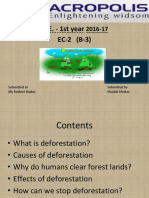 A Presentation on Deforestation