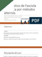 Fasciola Hepatica Daniel Felipe Barriga, Miguel Angel Pulido