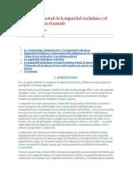 monografia de inseguridad ciudadana en bolivia.docx