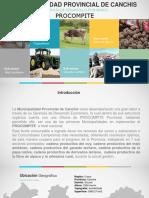 17-MP-de-Canchis-Experiencia-Procompite-de-Gobierno-Local.pdf