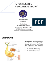 Tutorial Klinik_uli Periferal Nerve Injury