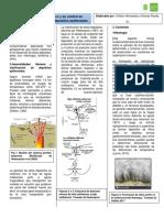 Resumen ejecutivo Seminario Geomorfología en Depositos Epitermales.pdf