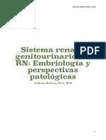 Tema 1. Embriología y Perspectivas Patológicas