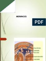 meninges 2017-7.pptx