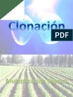 Clonacion.pptx