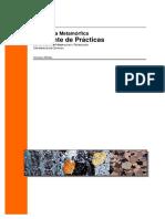 PETROLOGIA METAMORFICA.PDF