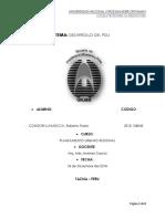 ROBERTO PDU.docx