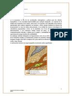 semana02-curvas polares 2014-2 (1).pdf
