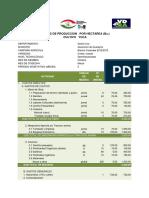 Costo de Produccion Yuca