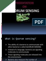 Quorum-Sensing.pptx