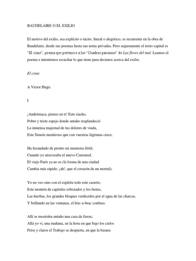 El Cisne Disturbios Poesía