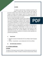 ELABORACION-DE-FRUTA-CONFITADA.docx