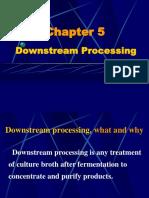 Downstream Process