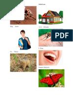 abecedario en qeqchi xalin images.docx