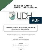 LOYOLA MANTILLA, LUIS TITO.pdf