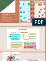 Psicofarmacología y Dependencia, Medio Interno.pptx
