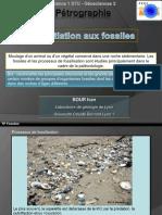tp-initiation-de-base-aux-fossiles (1).pdf