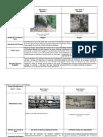 Cuadro De Diagnostico de vulnerabilidad acciones Biologica y corrosion .docx