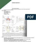 PBL 2.2 Summary Sheet