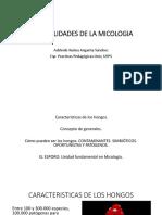 BIOLOGIA DE LOS HONGOS (1).pptx
