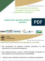 Capital Social y Agricultura Familiar en Ganaderia HEIFER